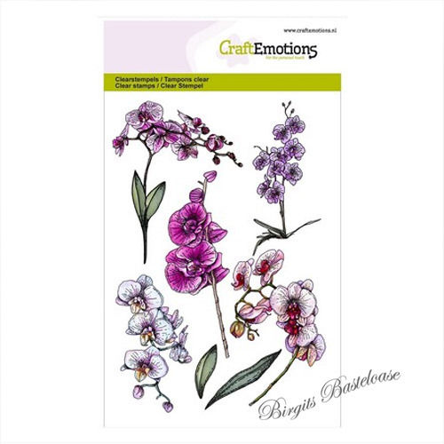 Clear Stamps Orchidee Zweige Orchid 1243
