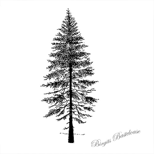 lavinia-fir-tree2